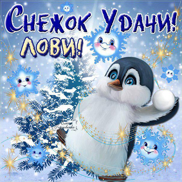 Класс, день снега открытки