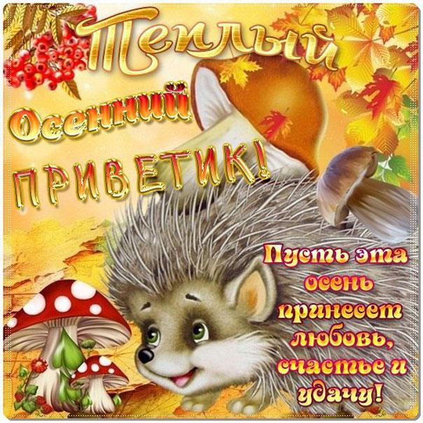 Забавные открытки гиф осень