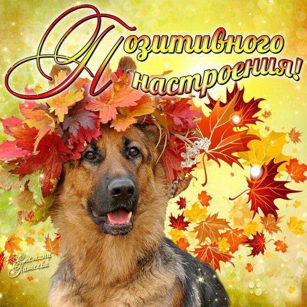 Открытка настроение осень