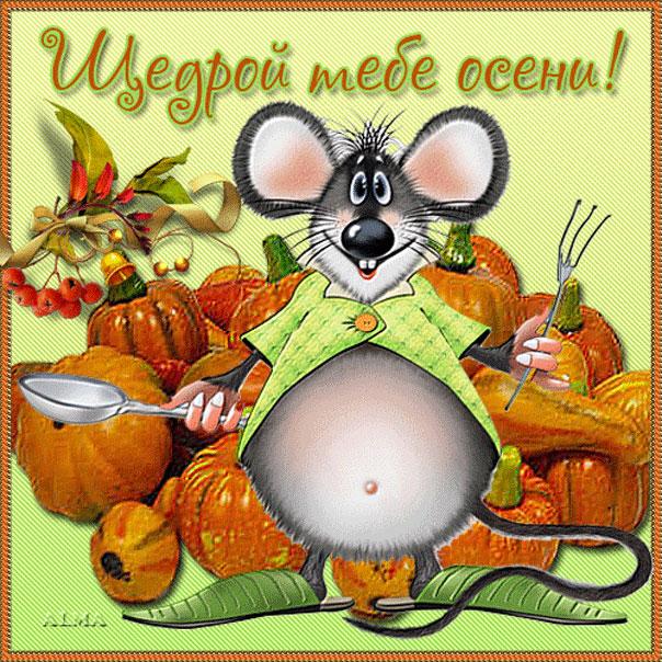 Открытки с осенью прикольные смешные, марина поздравлением