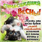 Готовые бесплатные открытки счастливой весны