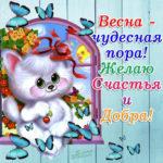 Лучшая открытка желаю счастья