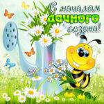 Позитивные открытки дачный сезон