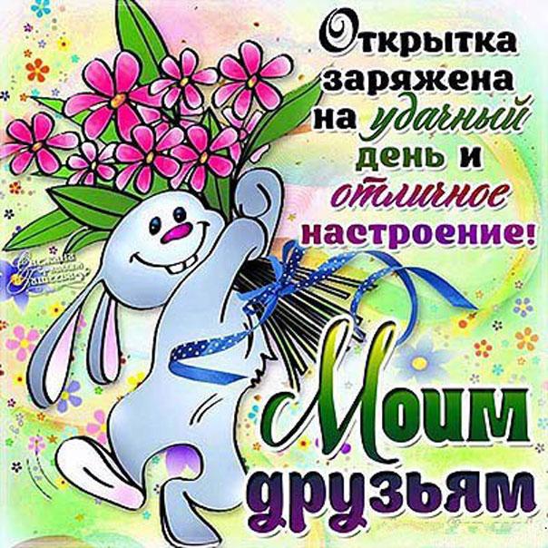 Картинки прикольные пожелания друзьям, госдума цветы