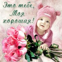 розы тебе