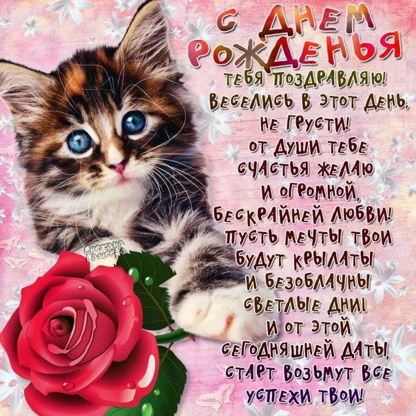 Позитивная открытка с днем рождения котик